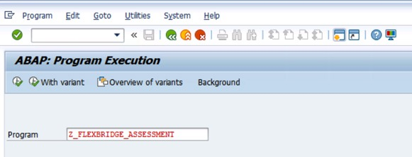 ABAP Program Execution screenshot