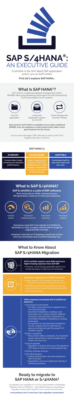 SAP S/4HANA: An Executive Guide Infographic